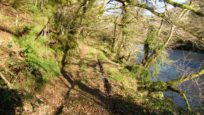 Walk along the River Cothi
